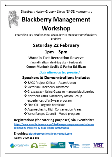 Blackberry Workshop Flyer image